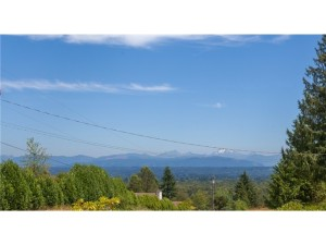 Terrific mountain view